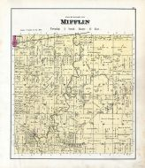 Mifflin, Wyandot County 1879