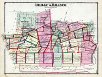Reilly and Branch, Schuylkill County 1875