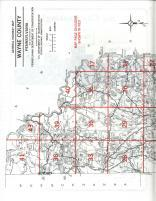 Map Image 029, Wayne County 1989
