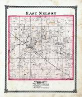 East Nelson Township, Okaw Creek, Farlow P.O., Moultrie County 1875