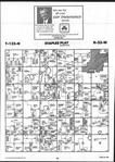 Map Image 043, Todd County 2001