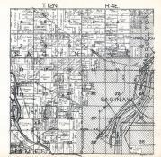 Township 12 N. Range 4 E., Saginaw, Carrollton, Paines, Saginaw County 1920c