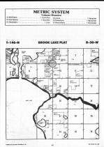 Brook Lake T146N-R30W, Beltrami County 1990