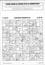 Pleasant Mound T105N-R29W, Blue Earth County 1991