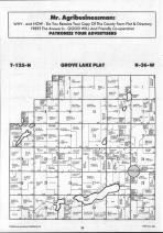 Glenwood, Grove Lake T125N-R36W, Pope County 1990