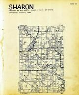 Sharon Township, Chariton River, Appanoose County 1946