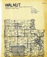 Walnut Township, Mystic, Rathburn, Walnut City, Appanoose County 1946