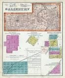 Salisbury Township, Sherman, Benton, Williamsville, Jamestown, Howlet, Iles Junction, Sangamon County 1874