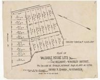 Waverley St. and Henry St. 1885, Belmont 1890c Survey Plans