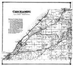 Chickaming Townhip, Union Pier PO, Troy Station PO, Brownes Station, Berrien County 1873