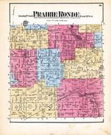 Prairie Ronde, Mill Pond, Kalamazoo County 1873 Published by F. W. Beers