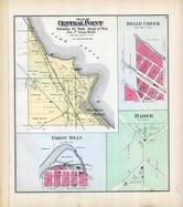 Central Point Township, Belle Creek, Forest Mills, Hader, Goodhue County 1894