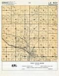 Le Roy Township, Mower County 1955c
