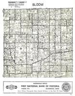 Bloom Township, Jerry City, Bloomdale, Wood County 1954