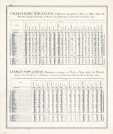 Statistics - Foreign Born Population, German Population - Page 219, Illinois State Atlas 1876