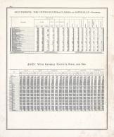 Statistics - Occupations, Ages - Page 223, Illinois State Atlas 1876