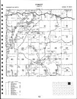 Forest Township, Bad Medicine Lake, Big Basswood Lake, Becker County 1992
