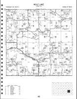 Wolf Lake Township, Becker County 1992