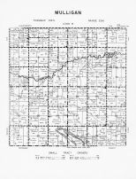 Code M - Mulligan Township, Wood Lake, Brown County 1961