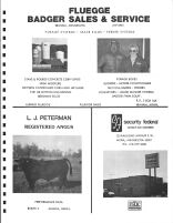 Fluegge Badger Sales and Service, L.J. Peterman, Security Federal Savings and Loan, Kanabec County 1982