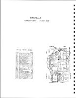 Birchdale Township 1, Sauk Lake, Long Lake, Diamond Point, Todd County 1947