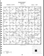 Code 10 - Schoolcraft Township, Madison County 1991