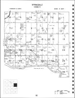 Springdale Township, Valley County 1995