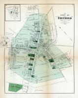 Freehold, Monmouth County 1873