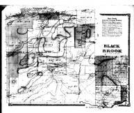 Black Brook Township, Clinton County 1869 Microfilm
