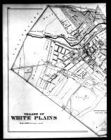White Plains 2 Left, Westchester County 1881