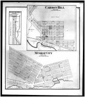 Murray City, Carbon Hill, South Carbon Hill, Hocking County 1876 Microfilm