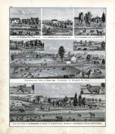 Cumming, Pool, Ekleberry, Lee, Vangundy, Wyandot County 1879