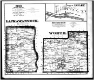 Page 043 - Lackawannock and Worth Townships, Hadley, Greenfield, Millbrook, Mercer County 1873