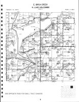 East Birch Creek Township, North Lake Holcombe Township, Chippewa County 1991